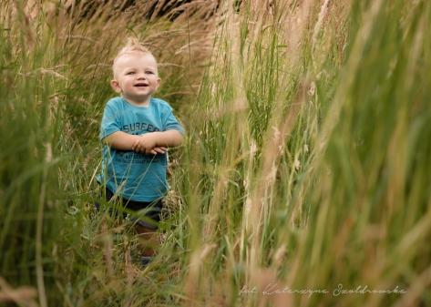 Sesja dziecięca w plenerze. Fotografia dziecka- rocznego chłopczykaw niebieskiej koszulce. Dziecko pozuje na polach kwitnącej trawy w Krakowie Mistrzejowicach, osiedle Złotego Wieku